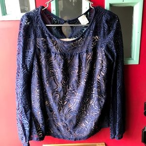 Ella Moss Lace Top in Blue Long Sleeves Small